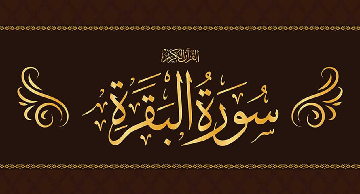 সামাজিক অবক্ষয় রােধে ইসলামি শিক্ষার গুরুত্ব বিশ্লেষণ