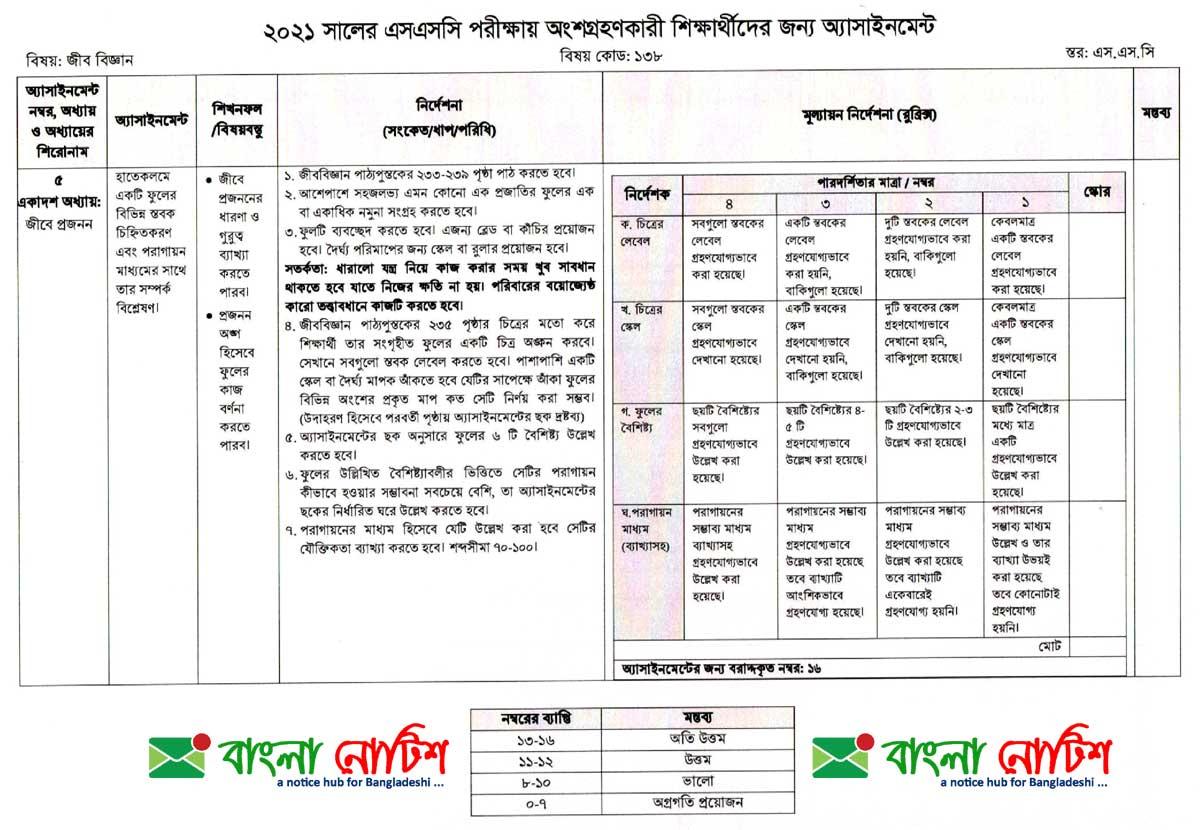 এসএসসি ২০২১ সপ্তম সপ্তাহ জীব বিজ্ঞান অ্যাসাইনমেন্ট, bpsc website, bpsc teletalk com bd 43th, bpsc teletalk com bd 43 bcs, bpsc circular, bpsc teletalk com bd job circular 2020, www bpsc gov bd result 2021, bpsc notice board 2021, bpsc apply online, bpsc circular 2021